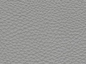 Portland Grey 021
