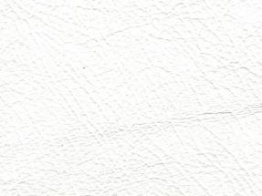 White 081